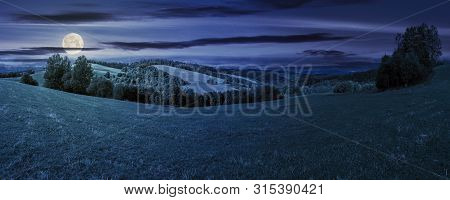 Panoramic Mountain Landscape At Night. Grassy Meadow On The Hillside In Full Moon Light. Trees On Th