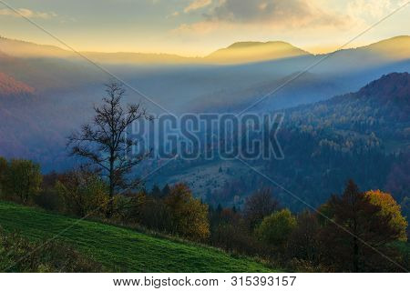 Amazing Foggy Sunrise In Autumn. Beautiful Mountain Landscape At Dawn. Trees On The Hill In Fall Fol