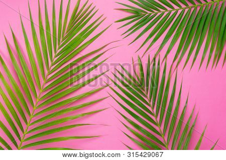Table Top View Aerial Image Of Summer Season Holiday Background Concept.flat Lay Coconut Or Palm Gre