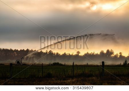 A Sprinkler In A Pasture Watering Crops On A Farm In Arcata, California