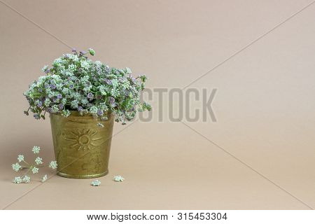 Flowers On A Brown Background. The Idea For A Postcard. Minimalism