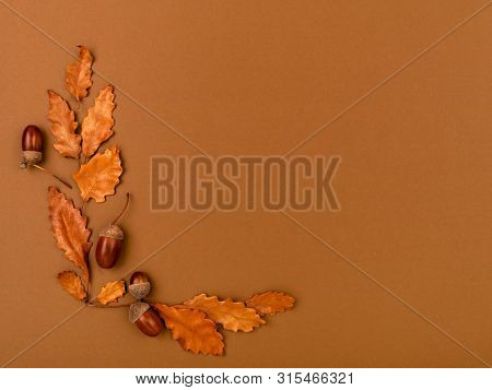 Top View Of Acorns And Oak Leaves On Dark Brown Background. Simple, Rustic Country Style Fall Or Tha
