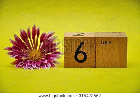 6 July On Wooden Blocks With A Pink And White Aster On A Yellow Background