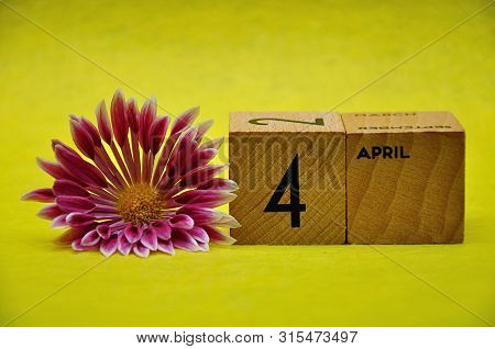 4 April On Wooden Blocks With A Pink And White Aster On A Yellow Background