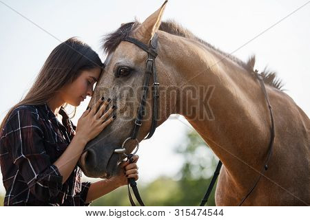 Tenderness, Love And Animals Concept. Sensual Young Woman Touching Horses Foretop, Close Eyes And Ge