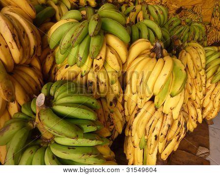 Banana Bundles