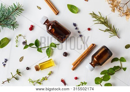 Ingredients For Essential Oil. Different Herbs And Bottles Of Essential Oil, White Background. Healt