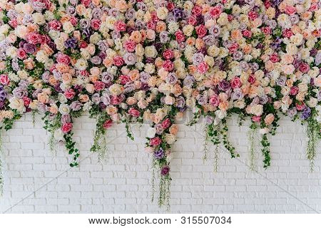 Beautiful Decorative Colorful Roses On Brick Wall. Wedding Party Decor Detail. Delicate Clambering P