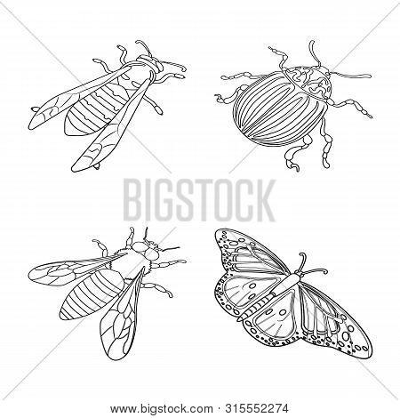 Vector Design Of Fauna And Entomology Logo. Collection Of Fauna And Animal Stock Vector Illustration