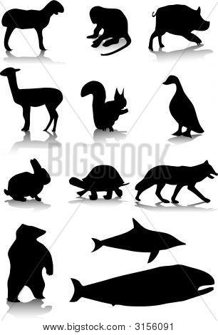 Animals2.Eps