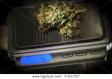 Weed on a marijuana scale