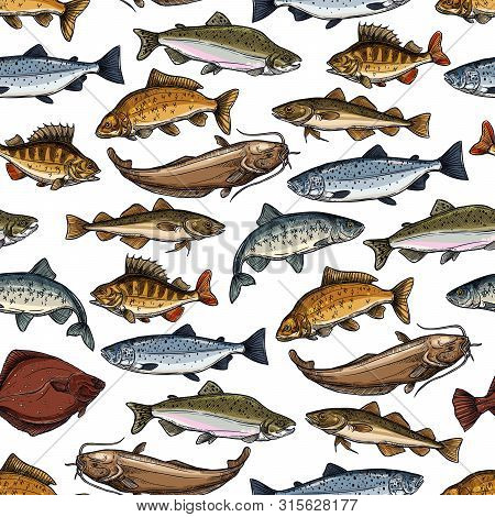 Fish Seamless Pattern With Sea And River Animal Vector Background. Marine Salmon, Tuna And Ocean Per