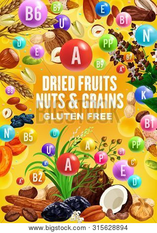 Nuts, Dried Fruits And Grains Rich Of Vitamins. Vector Date, Peanut And Walnut, Fig, Raisins And Alm