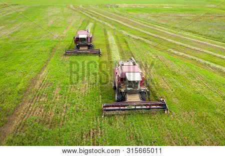 Aerial View Of Combine Harvesters On Agricultural Field. Harvesting Time. Harvester On A Green Agric