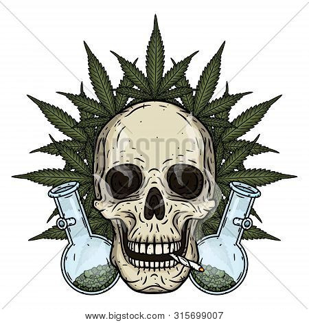 Skull. Skull with bong and marijuana leaves. Rastaman skull with cannabis leafs and spliff. poster