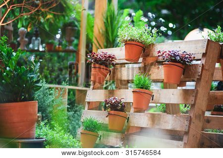Diy Recycled Wooden Pallet For Flower Pots. Storage Industrial Pallet Used In Gardening For A Wall D