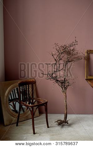 Interior Desolation And Devastation. A Dead Branch, A Chair Without A Seat. Brown Walls.