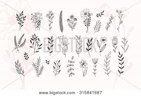 Minimalistic Flower Graphic Sketch Drawing, Trendy Tiny Tattoo Design, Floral Botanic Element