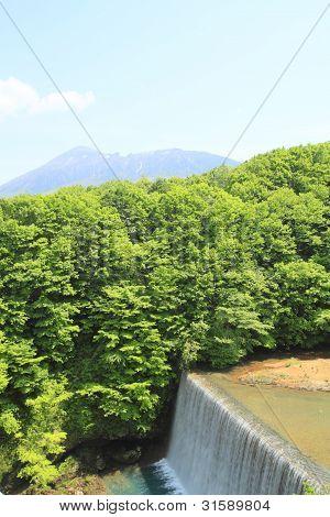 Fresh Green And Mt.iwate