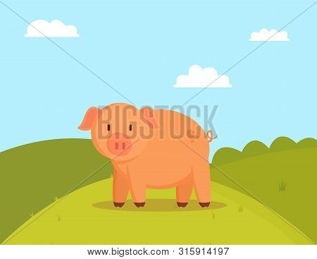 Pig On Green Glade, Image Of Fatty Domestic Pet Colorful Vector Illustration Of Cute Meadow With Pre