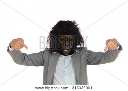 Businessman with gorilla head indicating isolated on a white background
