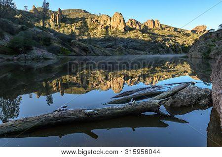 Logs Sit In Bear Gulch Reservoir In Central California