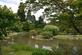 Seattle Japanese Garden At Washington Park Arboretum In Seattle, Washington