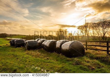 Silage Bales Beside A Wooden Fence In A Green Field, At Sunset On A Cloudy Winter Afternoon, Dumfrie
