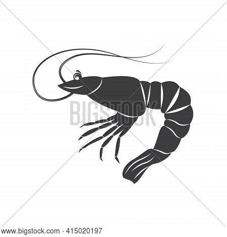 Shrimp Silhouette In Line Art Style. Shrimp Vector Illustration On White. Perfectly For Fishing Shop