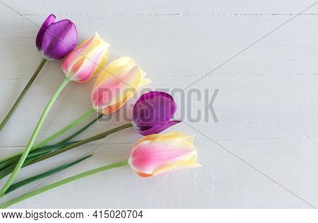 Tulips On The Background Of Wood With Space For Inscription. Colourful Tulips Flowers As A Holiday P
