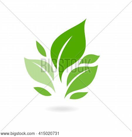 Green Leaf Ecology Nature Vector Icon. Plants And Leaves. Logos Of Green Leaf Ecology Nature Element
