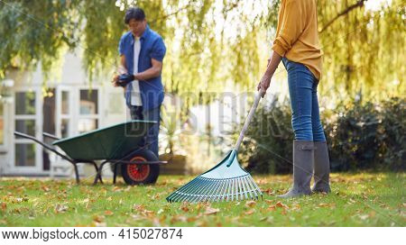 Mature Asian Couple Working In Garden At Home Raking And Tidying Leaves Into Barrow