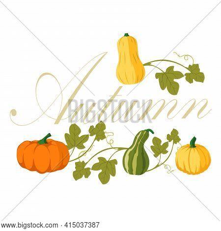 Pumpkin Simple Flat Color. Pumpkin Icon. Vector. Autumn Halloween Or Thanksgiving Pumpkin Symbol