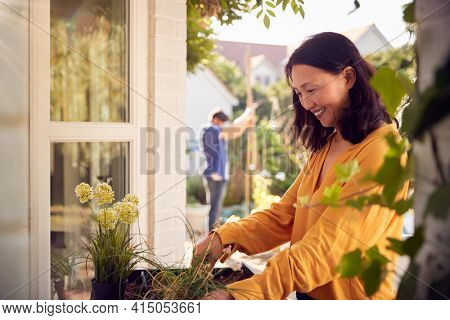 Mature Asian Woman Planting Plants Into Wooden Garden Planter At Home