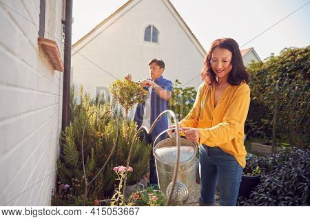 Mature Asian Couple At Work Watering And Pruning Plants In Garden At Home