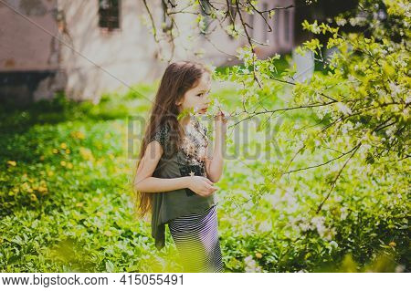 Little Girl With Long Hair Sniffing Flowers In Spring Cherry Garden. Portrait Of Happy Child Among F