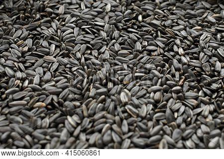 sunflower seeds background, closeup of roasted seeds