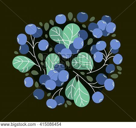 Fresh Delicious Ripe Wild Blueberry Vector Flat Illustration On Dark Background, Natural Diet Food V