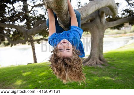 Little Kid Boy On A Tree Branch. Climbing And Hanging Child. Portrait Of A Beautiful Kid In Park Amo
