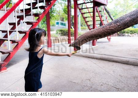 Cute Little Asian Girl Is Giving Food To The Big Animal. Elephant Reach Out Trunk To Eat The Bananas