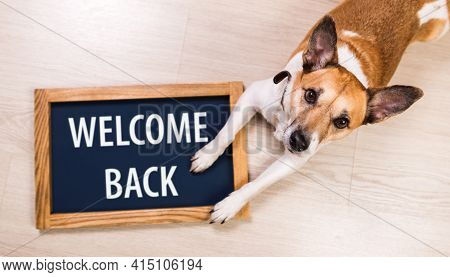 Welcome Back Written On A Blackboard In A Wooden Frame. A Concept For Hospitality Or Customer Focus
