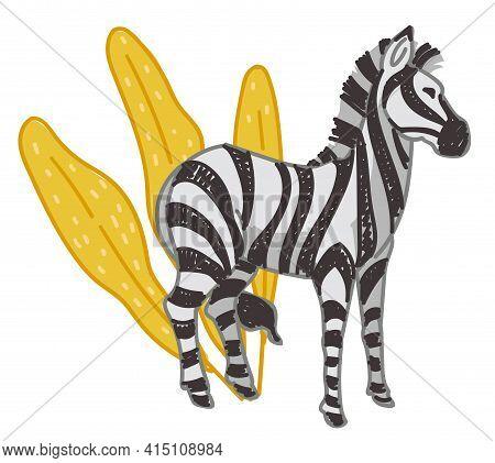 Zebra Animal In Natural Habitat Or Zoo Park Vector