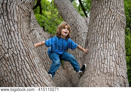 Little Boy Kid Facing Challenge Trying To Climb A Tree