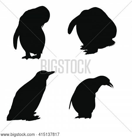 4 Penguin Silhouettes. Smooth And Clean Lines. High Detailed Penguin Silhouettes. Vector Illustratio