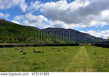 Pasture In A Valley With A Stonewall In England.