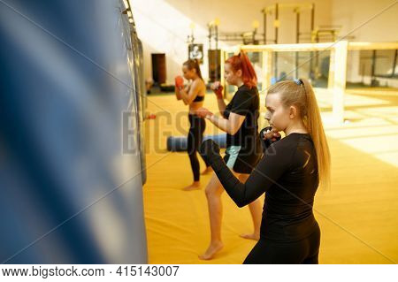 MMA fighters hits the bags in gym, female group