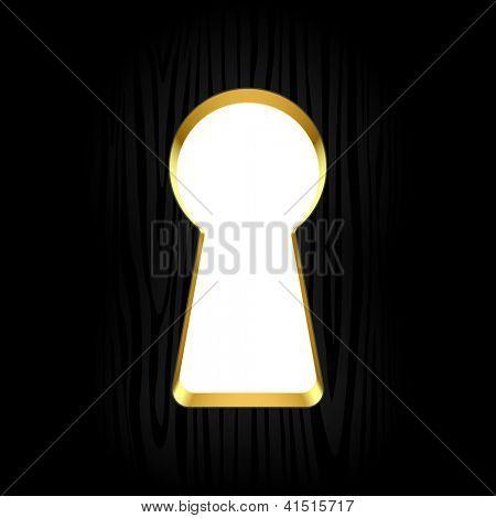 Keyhole. Vector.