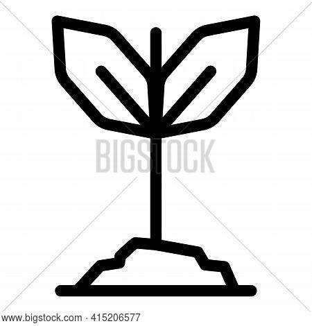 Garden Bio Plant Icon. Outline Garden Bio Plant Vector Icon For Web Design Isolated On White Backgro