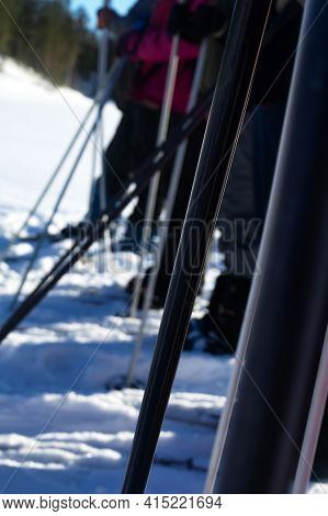 The Skiers Lined Up. Start Before A Long Hike On A Snow-covered Plain