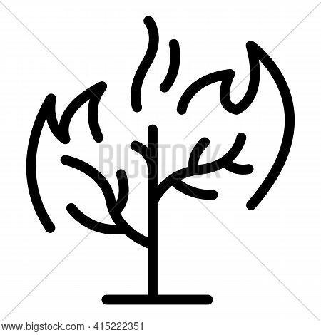 Tree Blaze Icon. Outline Tree Blaze Vector Icon For Web Design Isolated On White Background